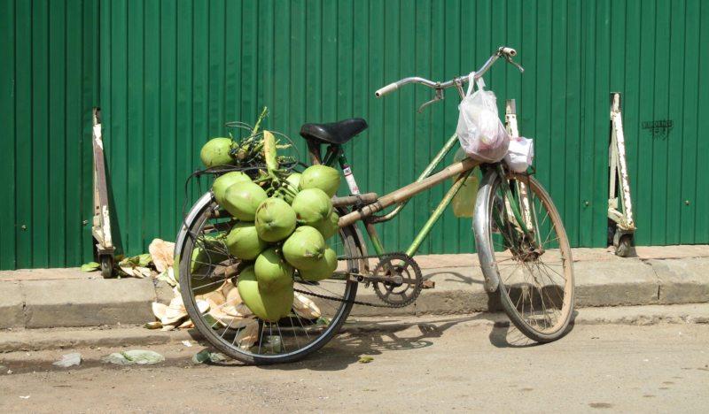 kokosový olej úvod